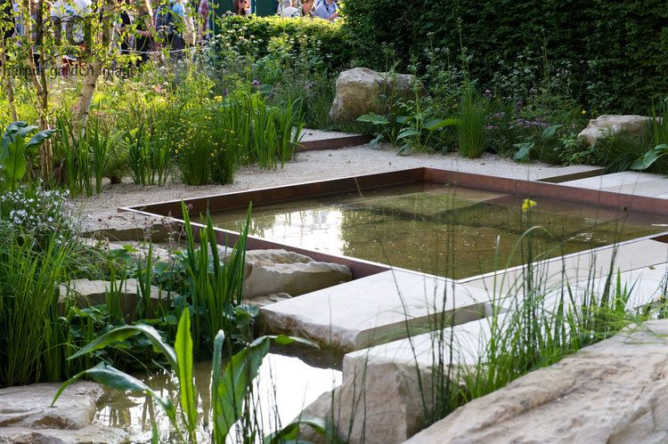 Act now with Garden Pond Designs